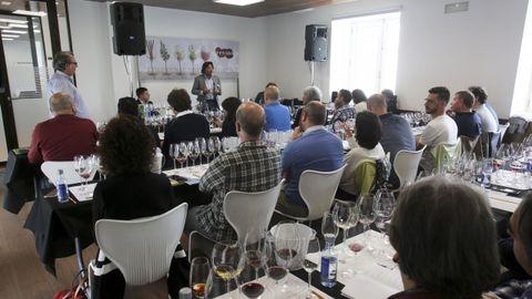 Fevino, cata 8 vinos de 100 Puntos Parker, con Luis Gutiérrez