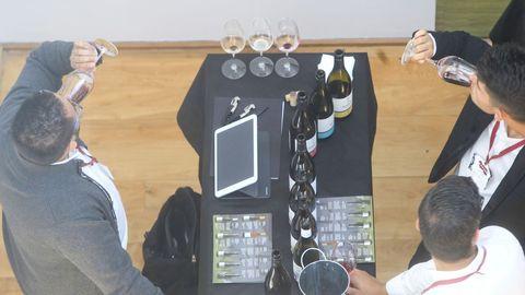 Túnel del vino en Fevino