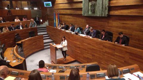 La portavoz de Ciudadanos en la Junta General del Principado de Asturias, Laura Pérez Macho