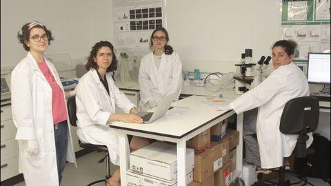 cica.Elena Fernández Bruguera, investigadora biomédica, con su equipo de la Unidad de Medicina Regenerativa del grupo de Reumatología del Cica-Inibic