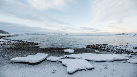 El océano Ártico,