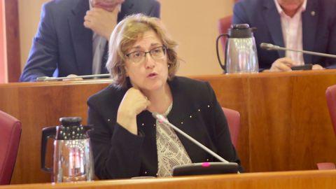 Olga Alonso (PSOE) es portavoz en la de Iberoamérica y secretaria en la de Educación