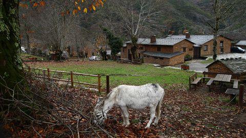 Froxán. Dotada de la categoría BIC, esta aldea se asienta sobre terrenos que se configuraron durante el período Ordovícico