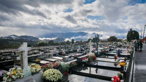 Vista general del cementerio del Salvador de Oviedo