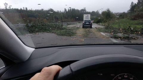 Temporal en Galicia. Árboles caidos en el acceso a la AP-9 a primera hora de la mañana, a la altura de Ordes en sentido Santiago