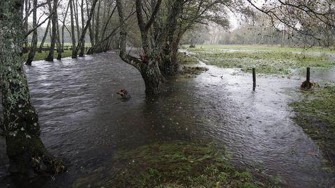 Temporal en Ourense.El río Arnoia se desbordó en Baños de Molgas