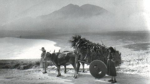 Imagen de 1954
