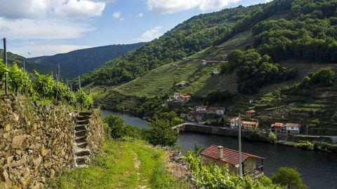El camino llega al Miño en Belesar, un pueblo divido entre las dos orillas del río