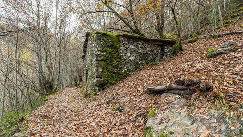 El camino que lleva a la cascada pasa junto a una antigua cabaña