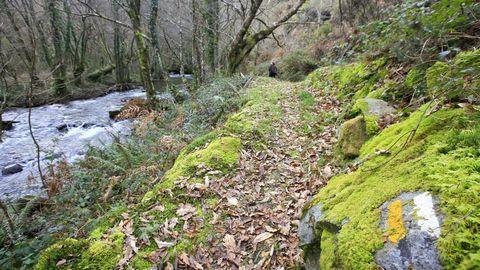 Vista del río desde el área recreativa de A Cortevella