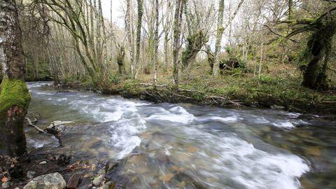 El río Eo en Cortevella