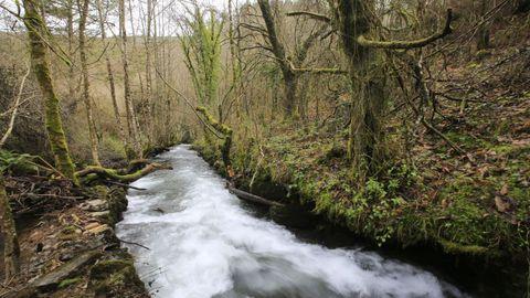El río Eo en las inmediaciones del Pozo da Ferrería