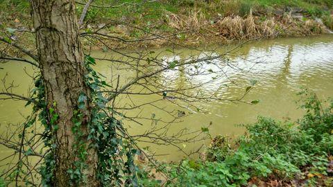 El río Piles, a su paso por La Guía