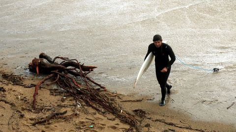 Un surfista esquiva las raíces de un árbol y la basura de la playa de la Barceloneta.