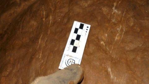 Marcas dejadas en la pared de una cueva de la sierra de O Courel por las garras de un oso pardo, en una imagen publicada en la guía que elaboró el Instituto Universitario de Xeoloxía de A Coruña