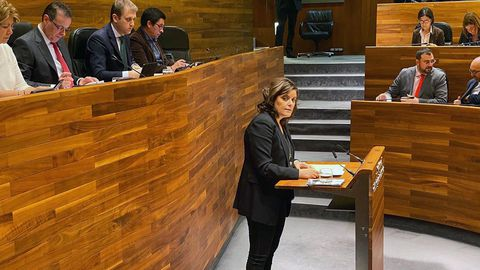 Imagen de archivo de la diputada del PP Beatriz Polledo interviniendo en el pleno de la Junta General