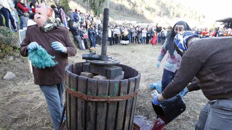 Domingo de Entroido Ribeirao en Santiago de Arriba
