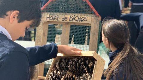 Los alumnos construyeron su propio hotel de insectos