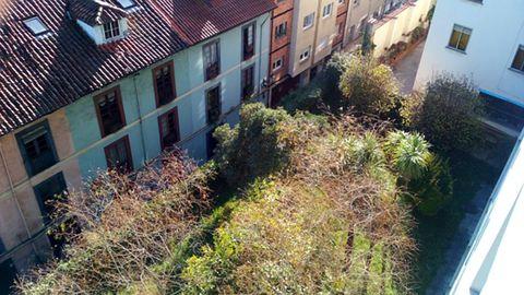 Una vista poco frecuente de la muralla medieval de Oviedo, completamente cubierta por la maleza.