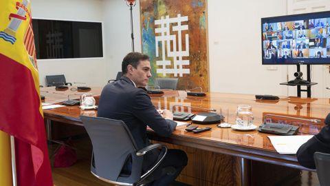 Sánchez, durante la conversación por videoconferencia de este domingo con presidentes de las comunidades autónomas