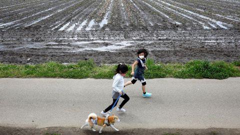 Niños pasean por las inmediaciones de un campo de 100.000 tulipales recién cortados en Japón