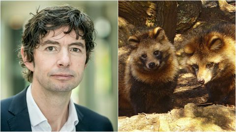 El virólogo Christian Drosten y dos ejemplares de tanuki, especie conocida también como perro mapache