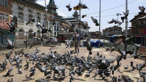 Un hombre con mascarilla alimenta palomas cerca de un santuario cerrado en Cachemira