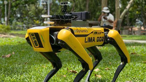 El robot está habilitado con distintos sensores