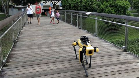 El perro-robot, que está en prueba,  transita a lo largo de un recorrido de unos 3 kilómetros y solo en las horas puntas, pero de suponer un éxito podría ampliar su horario y territorio
