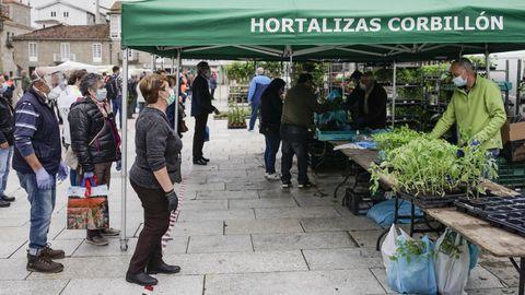 Uno de los puestos habituales, de hortalizas, volvió al mercado de los jueves de Celanova.