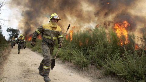 Brigadas forestales en un incendio en Pantón