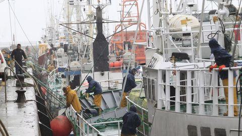 Barcos de Gran Sol como los que operan en Burela (en la imagen), Celeiro, A Coruña, Ribeira o Vigo resultarian afectados si no llegan a buen puerto las negociaciones entre la UE y el Reino Unido