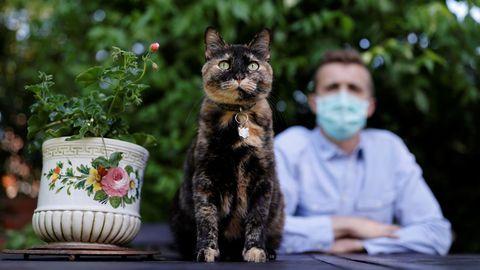 Brian, con su gato Papille en su casa cerca de París. El joven cree haberse infectado de coronavirus por el felino, que está recuperado del covid-19