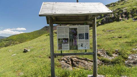 Un panel explicativo en la microrreserva de orquídeas del Alto da Pedra, una de las cuatro que fueron creadas hasta ahora en la sierra de O Courel