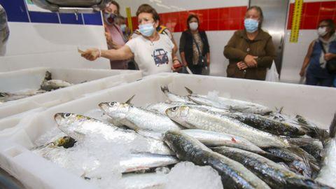 Venta de sardinas para San Juan en el mercado de Carballo.