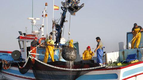 Un pesquero gallego capturando sardina en la ría de Arousa el pasado junio