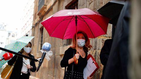 Teresa Mallada accede a la sede del TSJA, en Oviedo