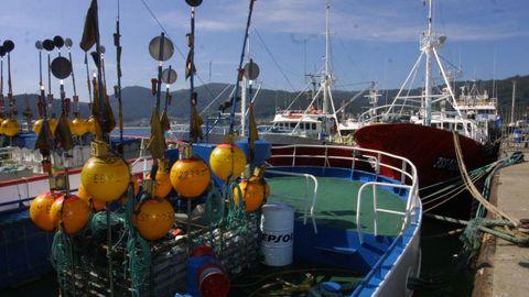 Palangreros que faenan en Gran Sol, amarrados en Celeiro (Viveiro), en una foto de archivo