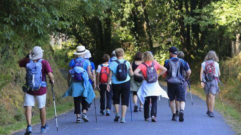 Un grupo de peregrinos navarros a la salida de Castroverde el pasado día 23