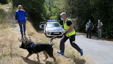 Los perros de rastreo participaron ayer y hoy en la búsqueda