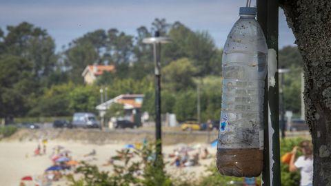 Protección Civil de A Pobra lleva trampeando en el entorno de Cabío y A Illa desde el 2017