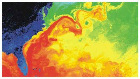 Detalle de la imagen térmica tomada por satélite de la Corriente del Golfo