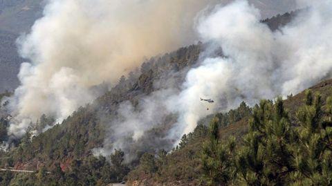 Aspecto que presentaba a media mañana la zona en la que empezó el incendio, junto a la carretera Quiroga-Folgoso