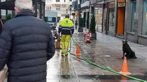 Borrado del carril bici de Oviedo