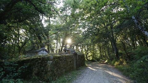 El cementerio está junto al Camino Primitivo