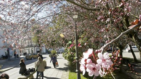 Praza do Ferrol, lugar para Lestegás que demuestra que los espacios públicos tradicionales siguen funcionando