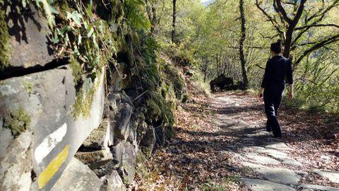 Un tramo del Camino de Invierno, una ruta histórica en la que se centra una de las actividades del programa