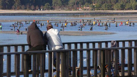 Unos viandantes observan a un grupo de mariscadoras en Lourizán