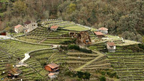 Desmonte en la zona de viñedo de San Fiz, en una imagen de archivo