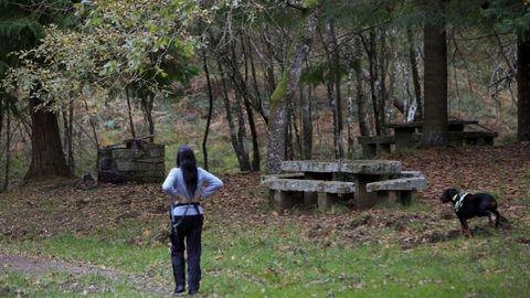 Visitar los lagos de Teixeiro puede ser una buena opción para el fin de semana